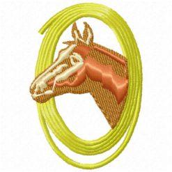 Horse`s Head